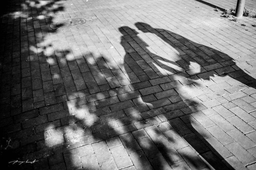 Schattenspiele Engagement Winsen Paarshooting Fotograf in Winsen Luhe