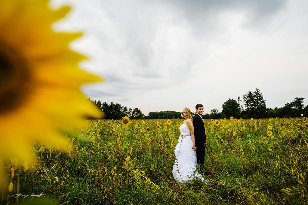 sonnenblumen fotograf brautpaar adendorf hochzeit
