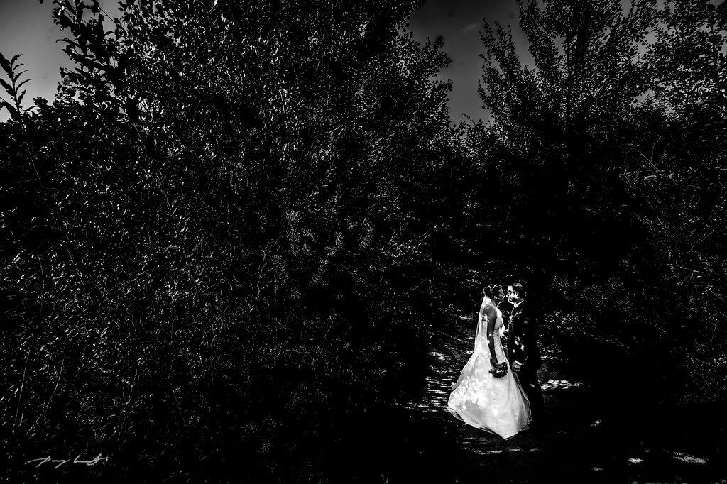 brautpaar lichtung fotografie hochzeit fotograf hochzeitsreportage