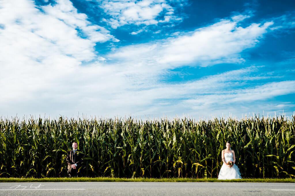 brautpaar im maisfeld hochzeitsfotograf fotografie feld braut und bräutigam hochzeitsfotografie